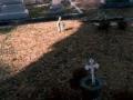 biloxi-cemetery-3-nicole-young_jpg